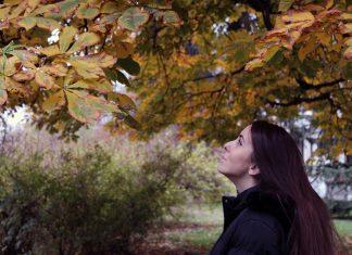 Jesen, Kovalska, Beograd