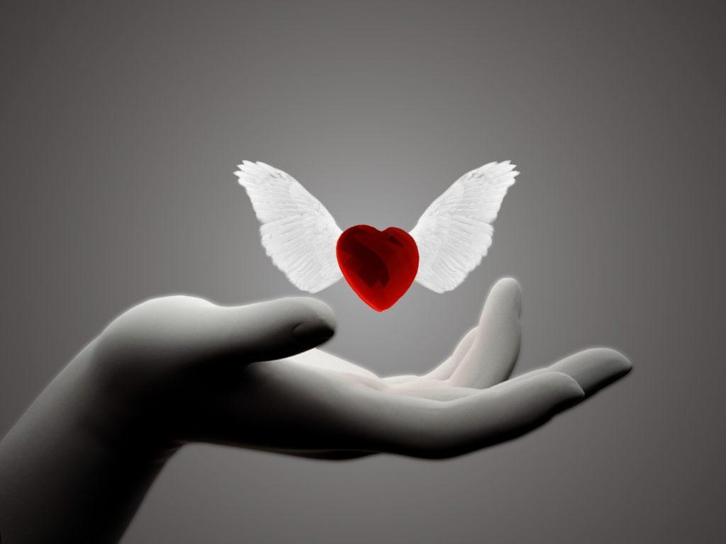 Srce sa krilima anđela; Foto_wowstyle