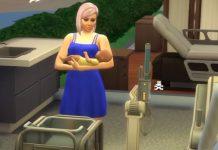 Trudnoća i porođaj The Sims
